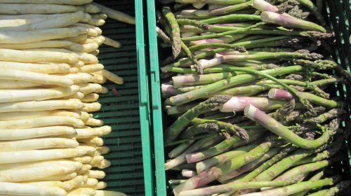 laekre-groentsager-groenne-asparges-paa-groenttorvet-d-12-maj-thumbnail
